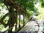 Sightseeing - Kulturhauptstadt Graz 2003 - Di 29.07.2003 - 48