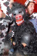 Cam Unifest - MQ Hofstallung - Fr 31.10.2008 - 78
