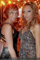 Hairdressing Award - Pyramide - So 09.11.2008 - 354