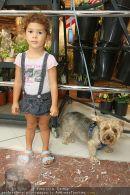 Lugner Shopping - Lugner City - Mo 24.08.2009 - 35