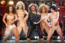 Tina Turner - Stadthalle - Sa 07.02.2009 - 1