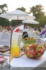 BSO Sommerfest - Schloß Miller-Aichholz - Do 01.07.2010 - 8