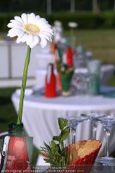 RMS Sommerfest 2 - Freudenau - Do 22.07.2010 - 37