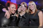 Hairdressing Award 2 - Pyramide - So 07.11.2010 - 16