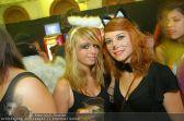Halloween - MQ Hofstallung - So 31.10.2010 - 63