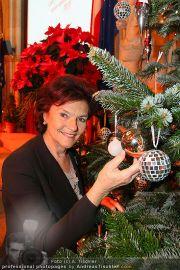 Licht ins Dunkel Charity - Rathaus - Mi 15.12.2010 - 3