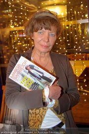 Buchpräsentation - Summerstage - So 27.11.2011 - 19