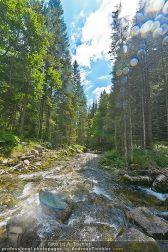 Special: Pure Nature - Österreich - Di 24.07.2012 - 12