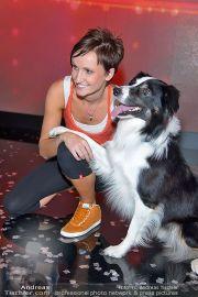 Die große Chance - ORF Zentrum - Fr 09.11.2012 - 27