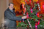 CocaCola Weihnachtstruck - Palais Liechtenstein - So 16.12.2012 - 6
