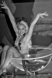 Burlesque Show - Platzhirsch - Sa 13.10.2012 - 39