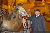 Ströck 1001 Nacht - Aux Gazelles - Sa 05.10.2013 - 15