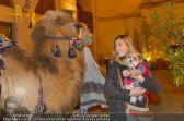 Ströck 1001 Nacht - Aux Gazelles - Sa 05.10.2013 - 25