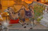 Ströck 1001 Nacht - Aux Gazelles - Sa 05.10.2013 - 7