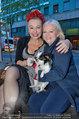 Pro Juventute Charity - Studio 44 - Do 03.04.2014 - Andrea BUDAY, Brigitte KRENN16