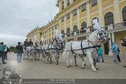 Lugner Hochzeit - Schloss Schönbrunn - Sa 13.09.2014 - sechssp�nnige Kutsche10