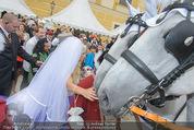 Lugner Hochzeit - Schloss Schönbrunn - Sa 13.09.2014 - Cathy SCHMITZ LUGNER139