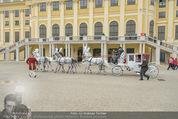 Lugner Hochzeit - Schloss Schönbrunn - Sa 13.09.2014 - 142