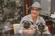 LisaFilm Faschingsfest - FilmCafe - Di 17.02.2015 - Christiane HÖRBIGER mit ihren Möpsen (Hunde)9