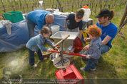 Opening - WeinBlick Feuersbrunn - Sa 11.04.2015 - 50
