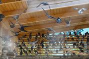 1 Tag auf Gut Aiderbichl - Gut Aiderbichl Gänserndorf - Fr 24.04.2015 - 152