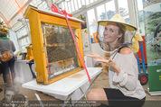 Milka - lila liebt grün - Palmenhaus - Fr 25.09.2015 - Patrizia KAISER34