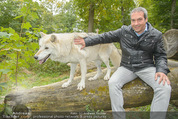 Wolf Experience - Wolfsgehege Ernstbrunn - Mi 30.09.2015 - Robert LETZ mit W�lfen, Wolf27