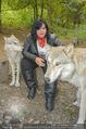 Wolf Experience - Wolfsgehege Ernstbrunn - Mi 30.09.2015 - Patricia STANIEK mit W�lfen, Wolf44