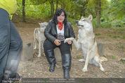 Wolf Experience - Wolfsgehege Ernstbrunn - Mi 30.09.2015 - Patricia STANIEK mit W�lfen, Wolf45