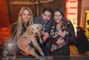 Heute Charitypunsch - Christkindlmarkt Stephansplatz - So 15.11.2015 - Yvonne RUEFF, Clemens UNTERREINER, Carina SCHWARZ mit Hunden1