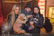 Heute Charitypunsch - Christkindlmarkt Stephansplatz - So 15.11.2015 - Yvonne RUEFF, Clemens UNTERREINER, Carina SCHWARZ mit Hunden9