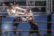 Austrian Fight Night - Admiral Dome - Sa 12.12.2015 - Boxen, Boxkampf, K�mpfer Actionfoto34
