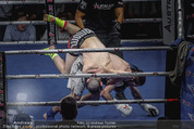 Austrian Fight Night - Admiral Dome - Sa 12.12.2015 - Boxen, Boxkampf, K�mpfer Actionfoto61