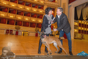 ORF backstage am Ball - Staatsoper - Mi 03.02.2016 - Andrea HEINRICH, Alfons HAIDER mit Sprengstoffsp�rhund20