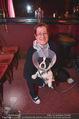 Mörbischer Festspiele PK - Eden Bar - Mi 20.04.2016 - Michaela SCHIMANKO mit Hund Blitz (frisch kastriert)15