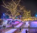SuperFit Charity Eisstockschießen - Rathausplatz - Mi 21.02.2018 - Wiener Eistraum, Eislaufplatz, Eislaufen, Rathausplatz Wien Bele43