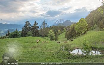 Feel Austria - Österreich - Mi 16.05.2018 - Kühe auf der Weide bei Wörschach Irdning Alm38