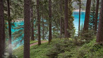 Österreich in Farben - Österreich - Mo 02.07.2018 - Grüner See Steiermark Hochschwabgebiet Naturjuwel Idylle Bergse13