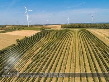 Hitze und Dürre - Niederösterreich - Do 23.08.2018 - Klimawandel Dürre Hitzewelle Hitzeperiode Landwirtschaft vertro7