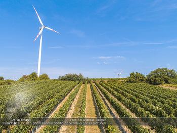 Hitze und Dürre - Niederösterreich - Do 23.08.2018 - Klimawandel Dürre Hitzewelle Hitzeperiode Landwirtschaft vertro8