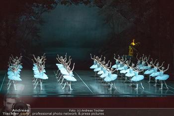 Schwanensee - Stadthalle - Mi 19.12.2018 - Der größte Schwanensee der Welt Bühnenfoto, Gruppenfoto, Schw1