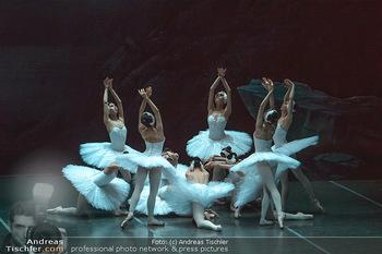 Schwanensee - Stadthalle - Mi 19.12.2018 - Der größte Schwanensee der Welt Bühnenfoto, Gruppenfoto, Schw27