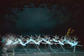 Schwanensee - Stadthalle - Mi 19.12.2018 - Der größte Schwanensee der Welt Bühnenfoto, Gruppenfoto, Schw30