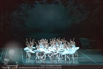Schwanensee - Stadthalle - Mi 19.12.2018 - Der größte Schwanensee der Welt Bühnenfoto, Gruppenfoto, Schw31