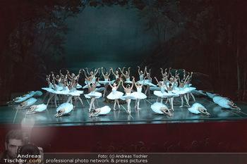 Schwanensee - Stadthalle - Mi 19.12.2018 - Der größte Schwanensee der Welt Bühnenfoto, Gruppenfoto, Schw33