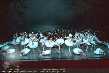 Schwanensee - Stadthalle - Mi 19.12.2018 - Der größte Schwanensee der Welt Bühnenfoto, Gruppenfoto, Schw34