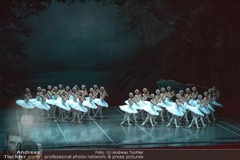 Schwanensee - Stadthalle - Mi 19.12.2018 - Der größte Schwanensee der Welt Bühnenfoto, Gruppenfoto, Schw35
