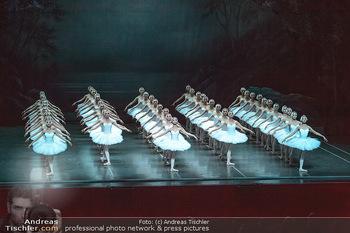 Schwanensee - Stadthalle - Mi 19.12.2018 - Der größte Schwanensee der Welt Bühnenfoto, Gruppenfoto, Schw36