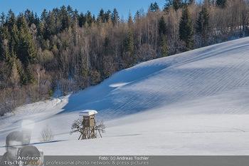 Österreich in Farben - Oberösterreich - Do 17.01.2019 - Winterlandschaft Nähe Gleinkersee und Hinterstoder, Hochsitz, O7