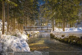 Österreich in Farben - Oberösterreich - Do 17.01.2019 - Schiederweiher im Winter, Schneebedeckt, blauer Himmel, Idylle, 13